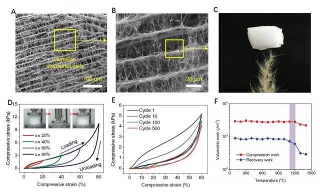 中国科学家研究团队成功开发出一种耐火陶瓷纳米纤维气凝胶