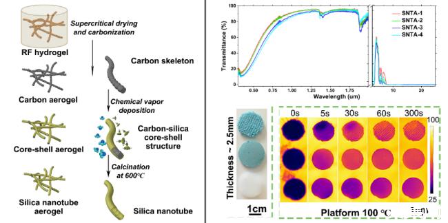 同济大学受北极熊毛发结构启发构建新型二氧化硅纳米管气凝胶
