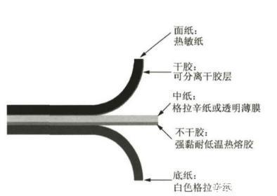 纳米纤维素:透明纸基材料定义、分类、制备方法及应用