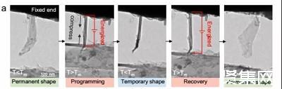 浙大高超团队等人开发出超快响应的形状记忆高分子/石墨烯复合材料