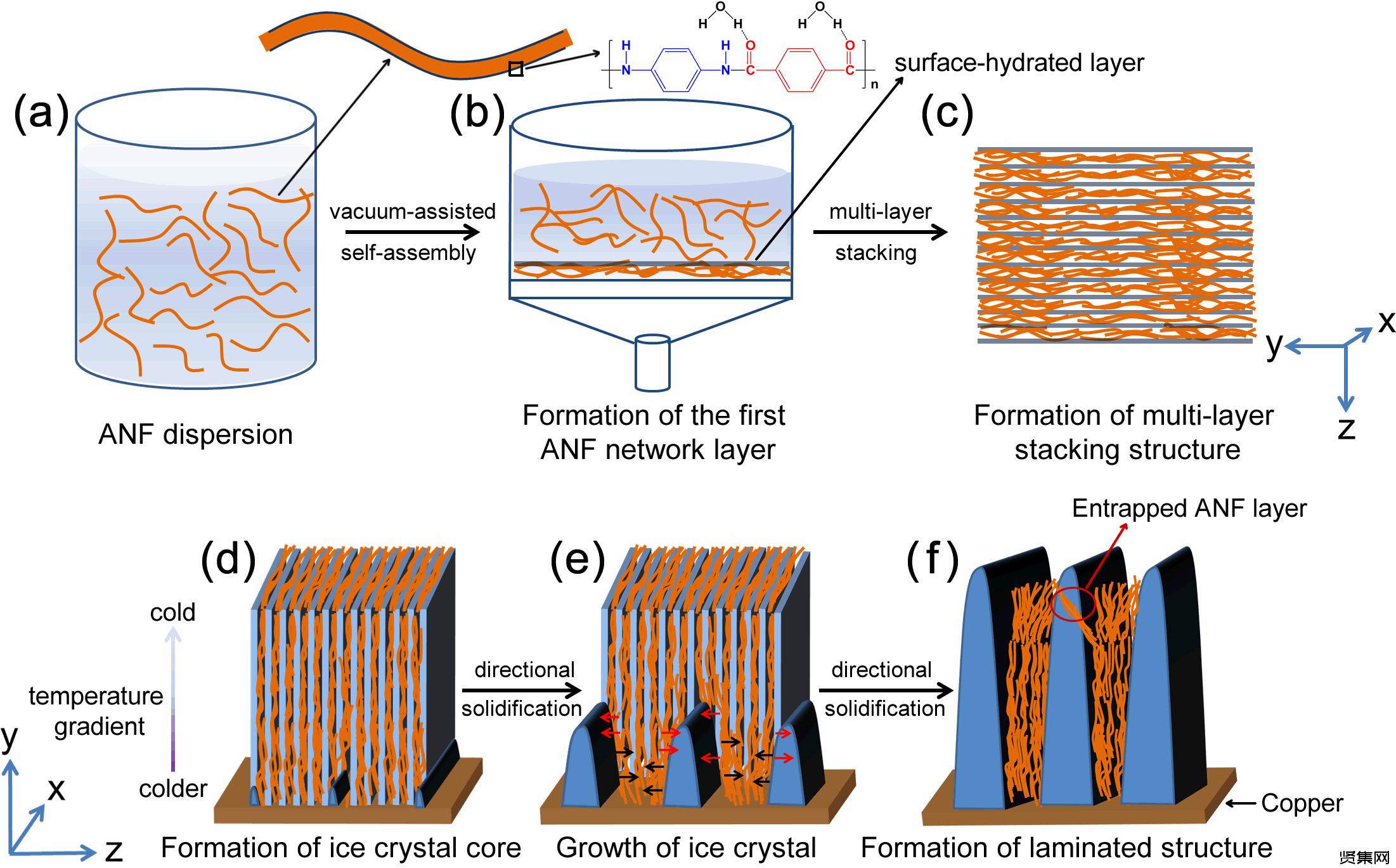 清華大學庹新林課題組將對位芳綸纖維制備成氣凝膠材料