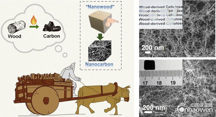 中国科大实现由木材制备超细碳纳米纤维气凝胶