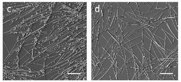 一种制备密度和孔结构可控的超轻型Ag纳米线气凝胶的新方法
