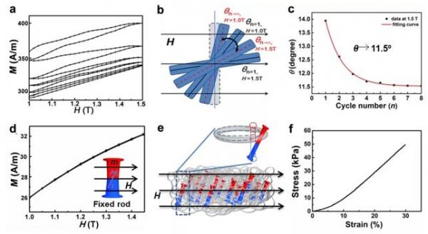 超輕磁性氣凝膠在磁場下的穩定性以及鐵磁納米顆粒與氣凝膠網絡相互作用的分析,以及力學性能的測試。