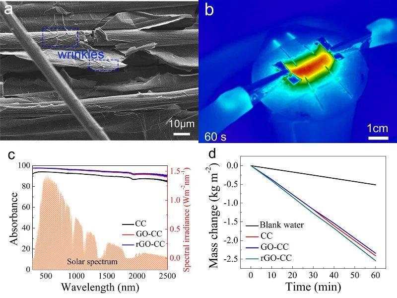 持续、稳定、高速率的光热/焦耳热界面蒸发助力海水淡化