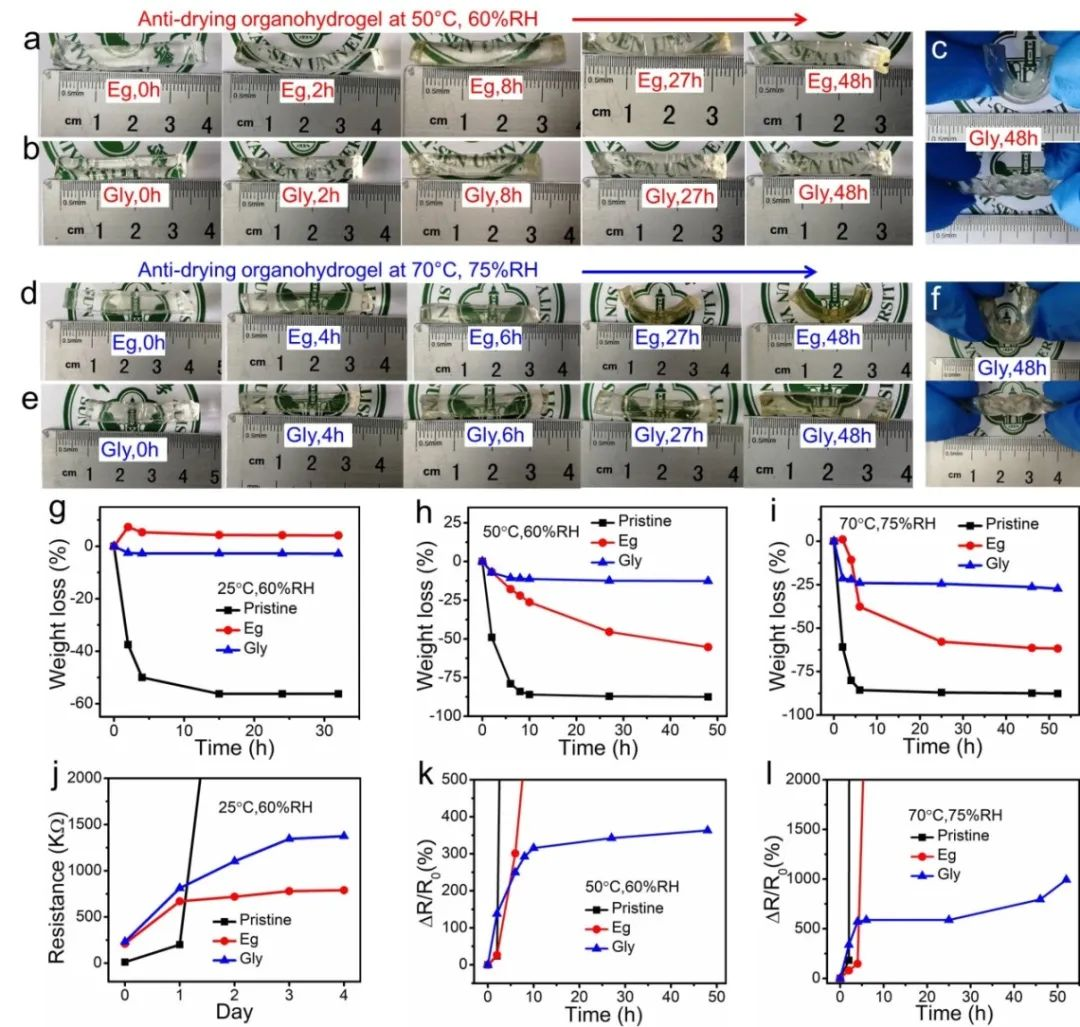 中山大学吴进《ACS AMI》:基于热稳定、自修复有机水凝胶的高灵敏、可拉伸温度传感器