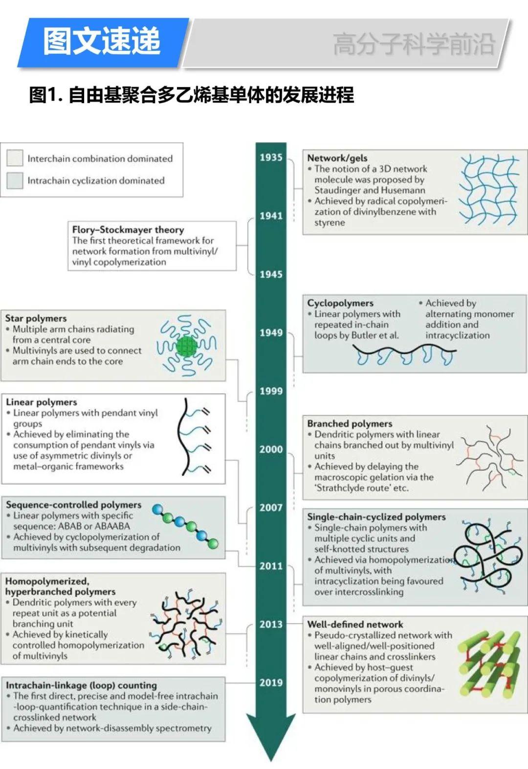 《自然综述·化学》自由基聚合多乙烯基单体合成复杂拓扑结构高分子